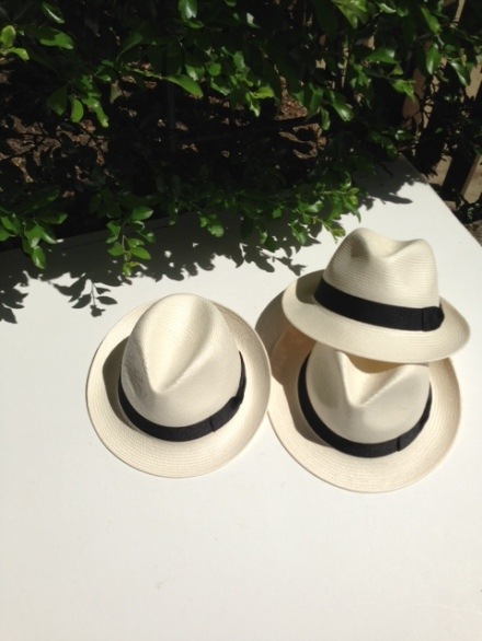 HORNETS FOR PANAMA HATS