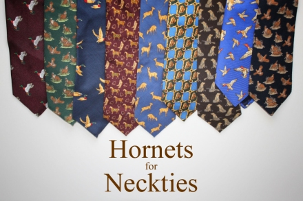 HORNETS FOR NECKTIES copy