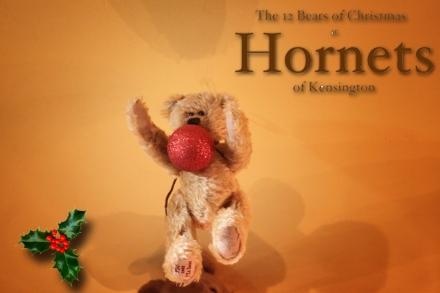 Hornets Bear - Adrian copy