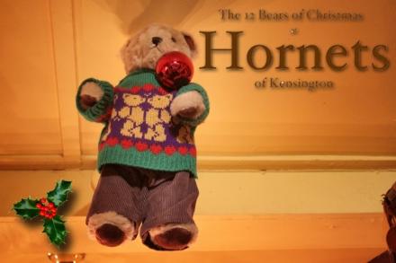 Hornets Bear - Alistair copy