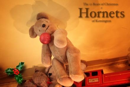Hornets Bear - Keith copy