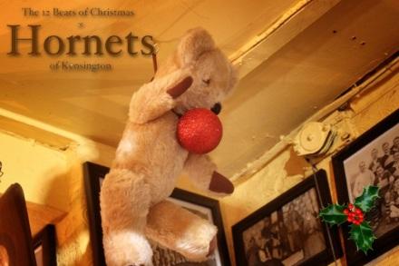 Hornets Bear - St John copy