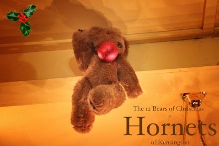 Hornets Bears Ian copy